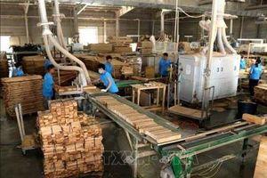 Kim ngạch xuất khẩu lâm sản 5 tháng tăng gần 20%