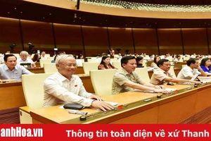 Quốc hội cho ý kiến về một số nội dung của dự thảo Luật Phòng, chống tác hại của rượu, bia bằng hệ thống điện tử