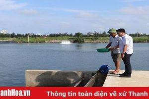 TP Sầm Sơn ứng dụng khoa học - kỹ thuật vào nuôi trồng thủy sản