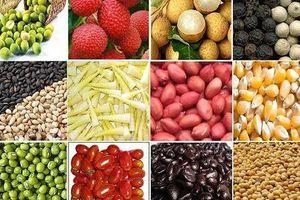 Thị trường hàng hóa tuần 27-31/5: Nông sản vào mùa