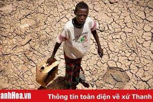 Hạn hán ở miền Nam châu Phi nghiêm trọng nhất trong gần 40 năm qua