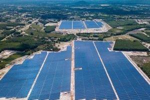 Quảng Ngãi: Khánh thành nhà máy điện mặt trời Bình Nguyên