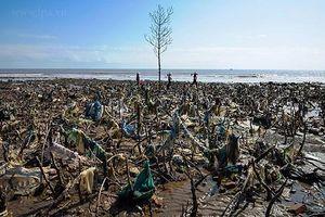 Cuộc độc hành 7.000 km và 3.000 bức ảnh của 'người hùng săn rác'