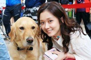 Bận rộn với công việc, người Hàn Quốc cho thú cưng đi học mẫu giáo