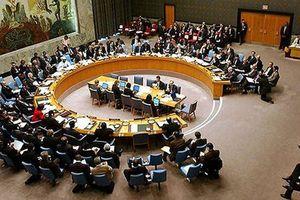 Việt Nam có cơ sở ứng cử Ủy viên HĐBA Liên Hợp quốc