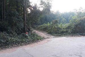 Phú Quốc: Cãi nhau giữa đường, người đàn ông đâm chết vợ rồi vào rừng tự tử