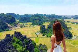 Thu trọn 'Mùa vàng Tam Cốc' từ đỉnh Hang Múa