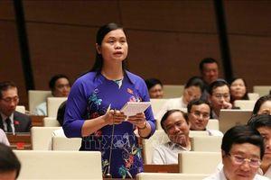 Đại biểu Quốc hội vẫn băn khoăn về việc sát hạch cấp giấy phép lái xe