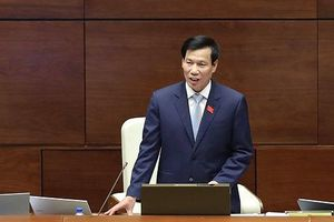 Bộ trưởng Nguyễn Ngọc Thiện: 'Xử phạt 100 triệu đồng cũng là nhỏ'