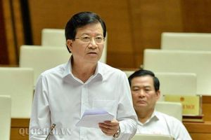 Phó Thủ tướng yêu cầu xử lý dứt điểm vi phạm vụ 8B Lê Trực và HH Linh Đàm