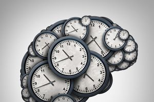Đồng hồ sinh học: Các bộ phận cơ thể phản ứng với ngày và đêm độc lập với não bộ