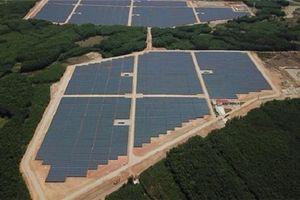 Vận hành nhà máy điện mặt trời nghìn tỷ đồng tại Quảng Ngãi