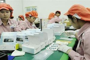 Việt Nam hưởng lợi gần 8% GDP nhờ chiến tranh thương mại