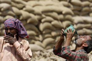 Nắng nóng 50 độ C, người dân Ấn Độ không dám ra khỏi nhà