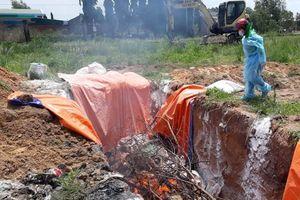 Đồng Nai hỗ trợ người dân bị thiệt hại do dịch tả lợn châu Phi