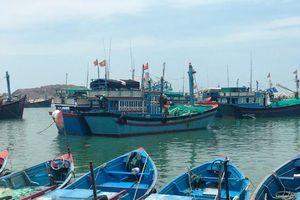 Đảm bảo các điều kiện khai thác thủy hải sản an toàn