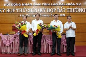 TP.HCM và TP. Lào Cai có tân Phó Chủ tịch