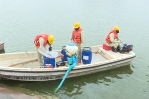 Giám định chế phẩm làm sạch 87 hồ Hà Nội: 'Không thể sơ sài được'