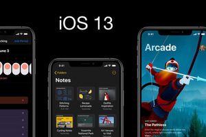 iOS 13 âm thầm tích hợp bộ tra từ điển tiếng Việt miễn phí