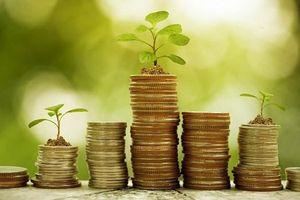 Chứng khoán SHS dự chi 311 tỷ đồng cổ tức năm 2018