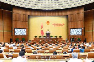 Quốc hội nghe tờ trình dự án Luật Dân quân tự vệ (sửa đổi)