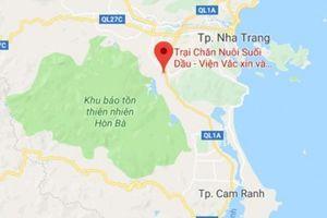 Đường cao tốc Bắc - Nam 'né' viện sản xuất vắc-xin