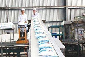 Thành Thành Công - Biên Hòa (SBT): Agri Asia Pacific Ltd đã bán 8 triệu cổ phiếu