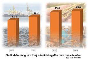 5 tháng, xuất khẩu nông lâm thủy sản đạt hơn 16 tỉ đô la Mỹ