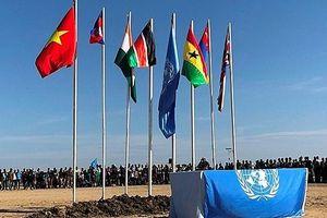 Ứng cử Ủy viên không thường trực Hội đồng Bảo an: Việt Nam có nhiều cơ hội chiến thắng