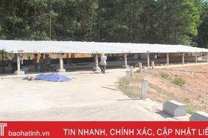Xây trại chăn nuôi vịt trên đỉnh đập, vi phạm hành lang an toàn hồ chứa