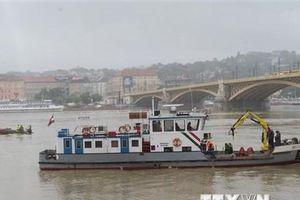 Chưa tìm thấy toàn bộ nạn nhân vụ chìm thuyền trên sông Danube