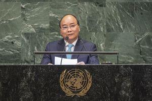 Việt Nam sẵn sàng đóng góp tích cực cho nỗ lực chung của quốc tế vì hòa bình, an ninh, phát triển và tiến bộ