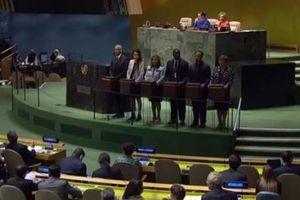 Việt Nam trúng cử Ủy viên Không thường trực Hội đồng Bảo an Liên Hợp quốc