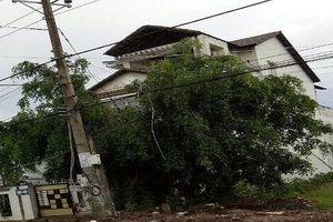 Lừa bán đất dự án, Giám đốc Công ty Thiên Phúc (Bạc Liêu) bị khởi tố, bắt giam