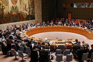 Việt Nam đắc cử ủy viên không thường trực Hội đồng Bảo an Liên Hợp Quốc