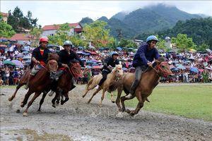 Giải đua ngựa truyền thống Bắc Hà 2019 thu hút hàng vạn du khách
