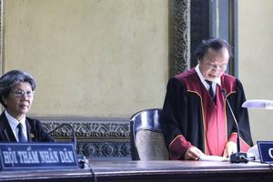Bà Lê Hoàng Diệp Thảo đề nghị xem xét nội dung bản án sơ thẩm