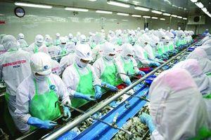 Lời cảnh tỉnh cho các doanh nghiệp Việt nhìn từ Minh Phú