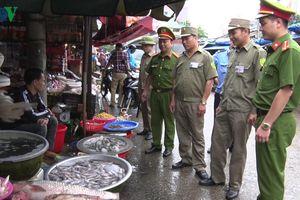 Lạng Sơn tăng cường kiểm soát nhập lậu tôm hùm đất
