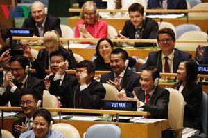 'Sứ mệnh kép' đầy tự hào và trọng trách của Việt Nam