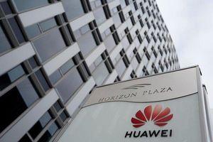 Huawei khiến thế giới chia rẽ