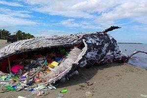3 gợi ý để bạn tuyên chiến với rác thải nhựa