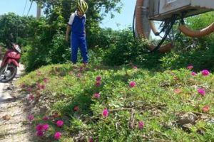 Thông điệp 'hoa thay rác' của vị Chủ tịch tỉnh 45 tuổi