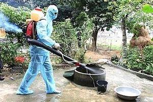 Hà Nội: Chủ động triển khai các biện pháp phòng, chống sốt xuất huyết