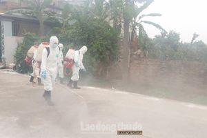 Nỗ lực khống chế các ổ bệnh dịch tả lợn châu Phi