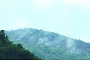 Đốt rẫy gây cháy rừng, cả trăm người trèo núi dập lửa