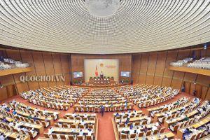 Quốc hội thảo luận về Luật Cán bộ, công chức và Luật Viên chức