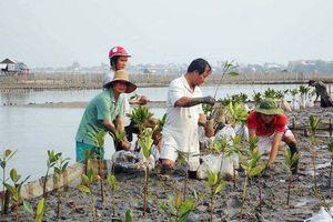 Ninh Thuận hỗ trợ phát triển các sản phẩm đặc thù