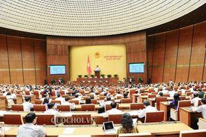 Quốc hội sẽ giám sát chuyên đề 'Việc thực hiện chính sách, pháp luật về phòng, chống xâm hại trẻ em' tại Kỳ họp thứ 9
