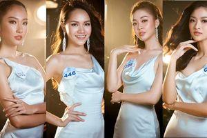 Ngắm dàn thí sinh nổi bật của 'Hoa hậu Thế giới Việt Nam 2019'